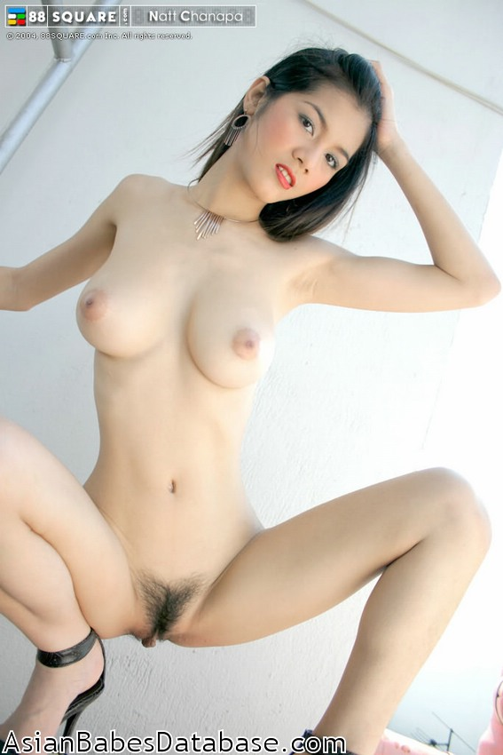 View The Asian Babes Database File On Natt Chanapa