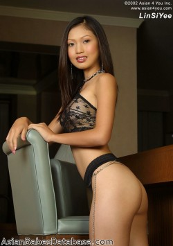 classy-asian-babe-nude-12