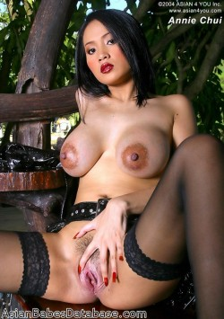 asian-big-tits-stockings-10