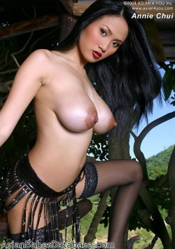 asian-big-tits-stockings-13