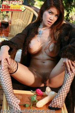 large-breasts-fishnet-stockings-03